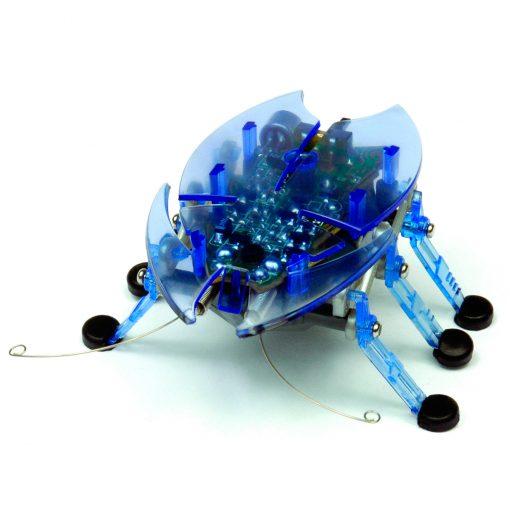 beetle azul hexbug